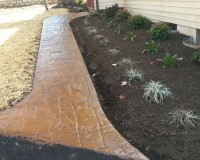 Stamped Concrete with plants