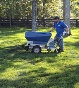 Landscape maintenance services near me